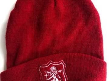 Selling with online payment: SHPP Woolly Hat
