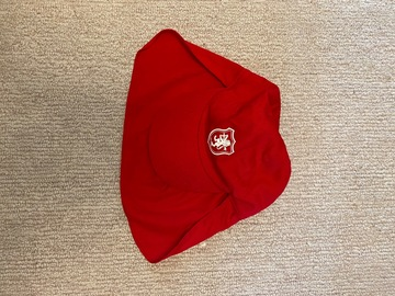 Selling with online payment: SHPP Leg. Cap x2