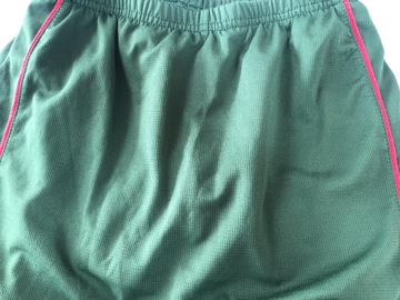 Selling with online payment: Greeen Skort - Age 10?