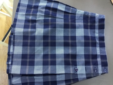 Selling with online payment: Blue check kilt